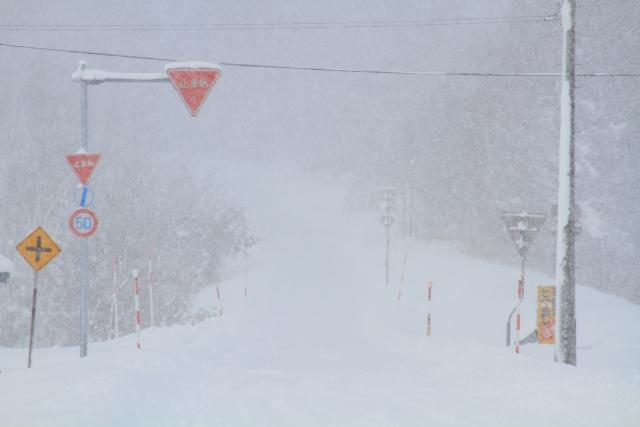 セキスイハイム、土地活用、雪